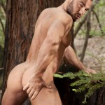 Jessy Ares | Raging Stallion